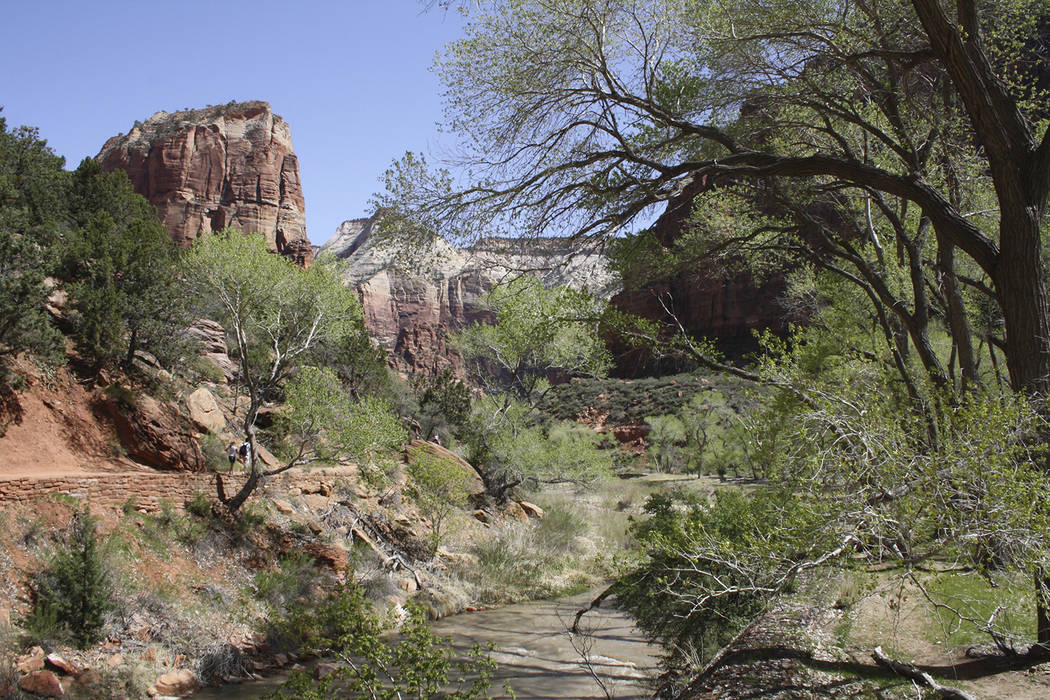 The trail toward Angel's Landing in Zion National Park, Utah. (Deborah Wall/Special to View)