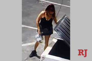 Surveillance video from Riverside County Department of Animal Services