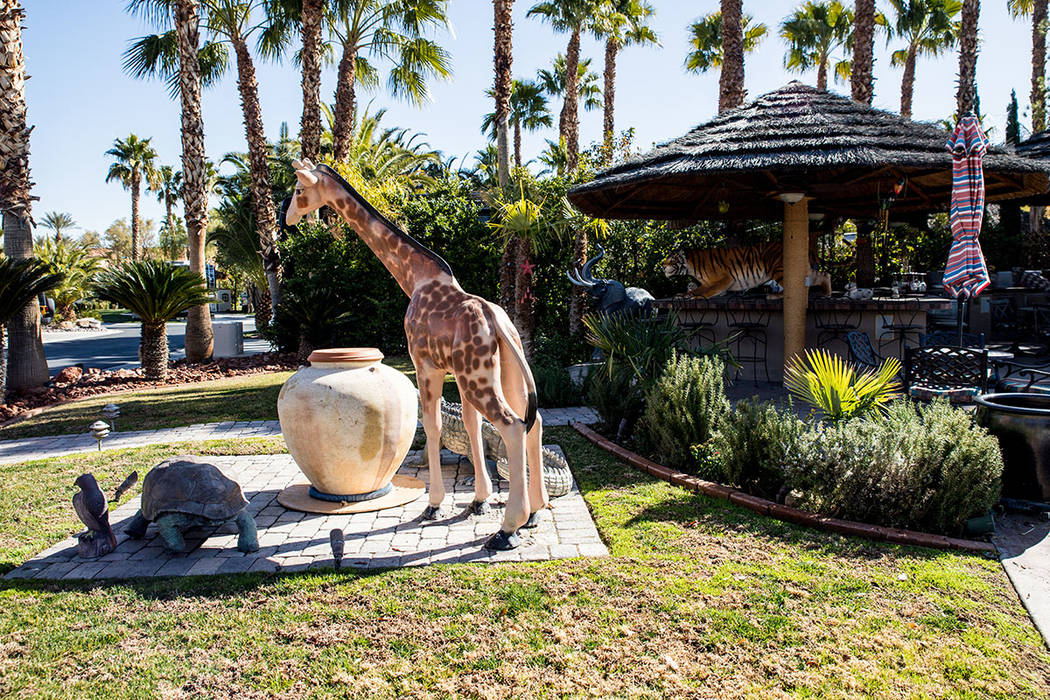 One owner turned his lot into a Safari park, with the installation of life-sized faux jungle an ...
