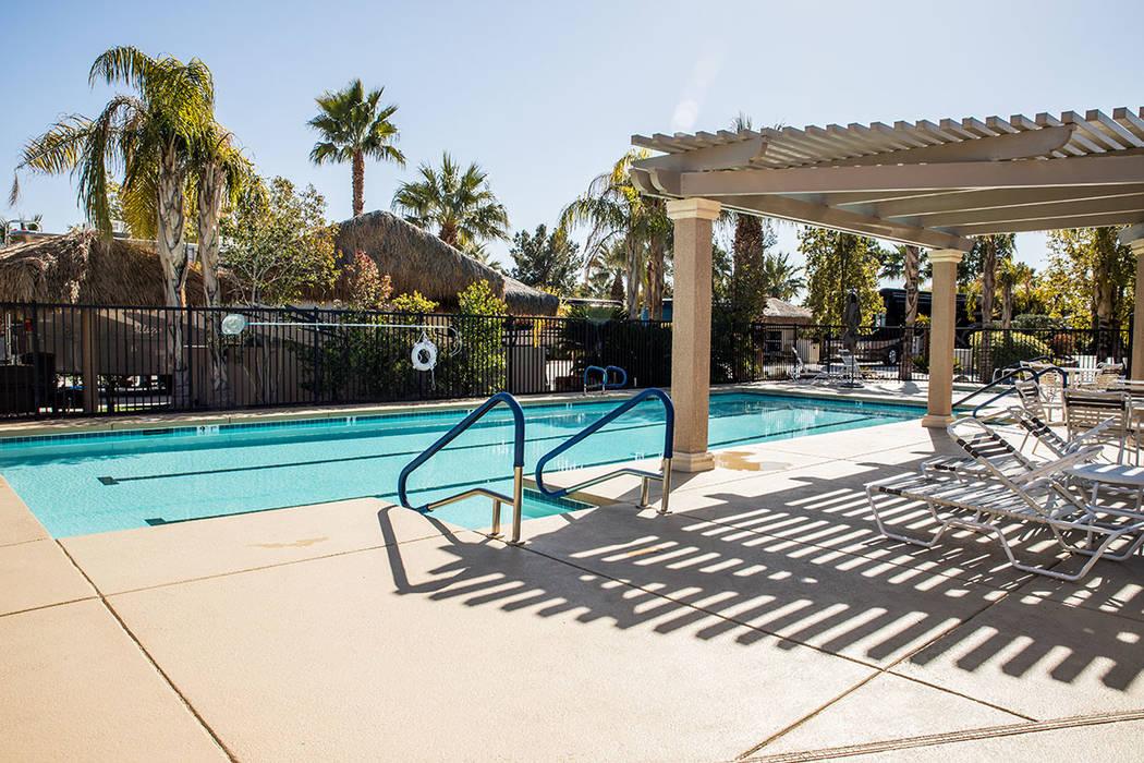 One of four pools at Las Vegas Motorcoach Resort. (Tonya Harvey Real Estate Millions)