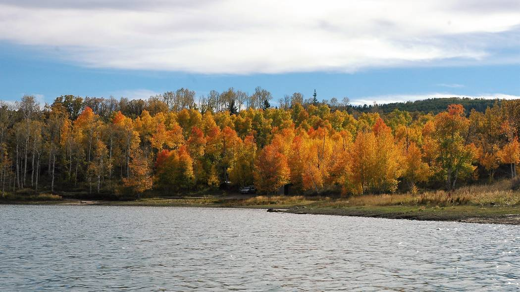 Fall fishing at Kolob Reservoir is among the best to be found in Utah's high country. Even when ...