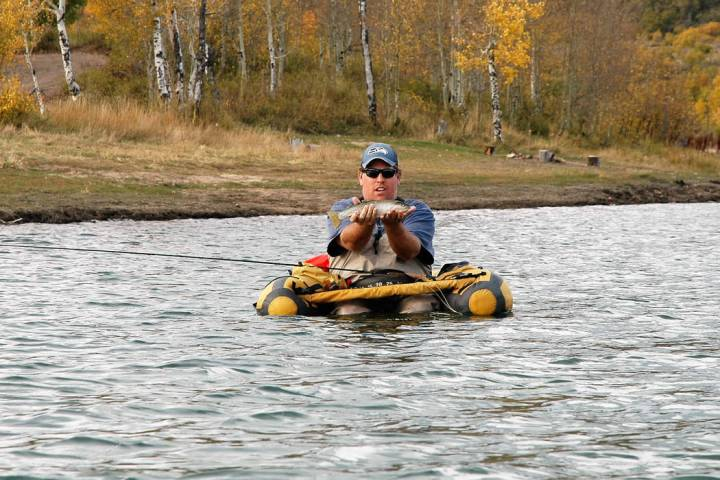 Trevis Lee, of Henderson, hoists a rainbow trout he caught at Kolob Reservoir in Southern Utah. ...