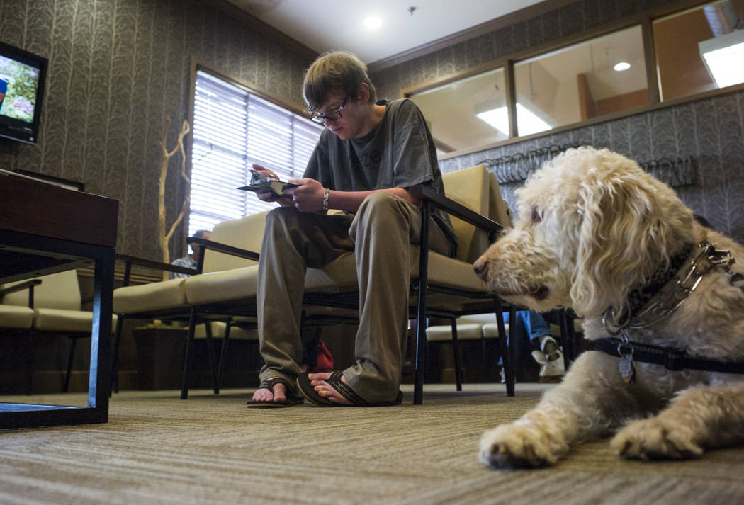 Grayson McClure fills out paperwork for his physical therapy appointment as his service dog Yoj ...
