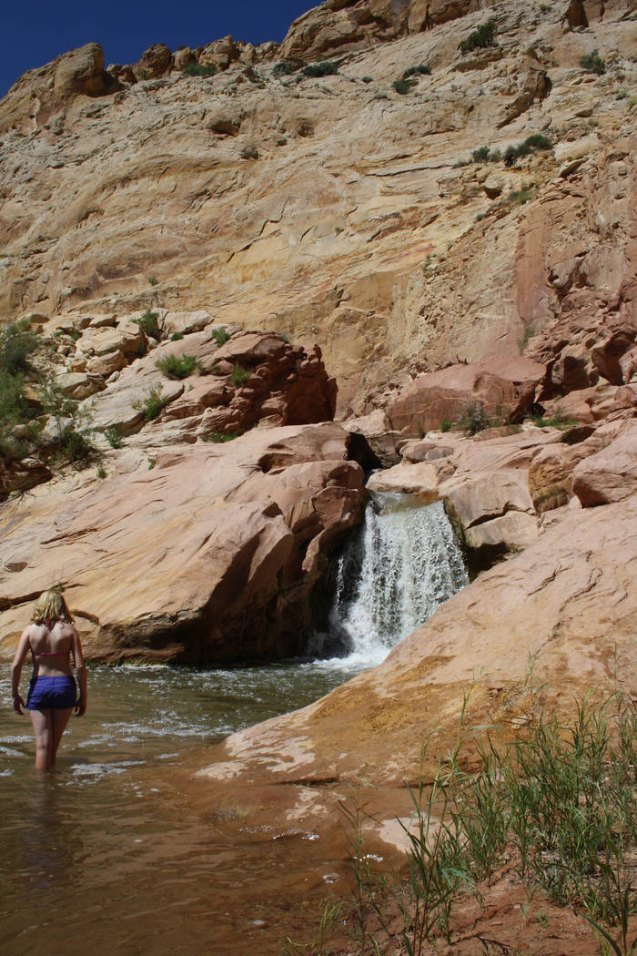 A small waterfall can be found along the Fremont River on Utah Route 24 in Capitol Reef Nationa ...