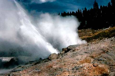 This recent but undated photo provided by the National Park Service shows Ledge Geyser in Yello ...