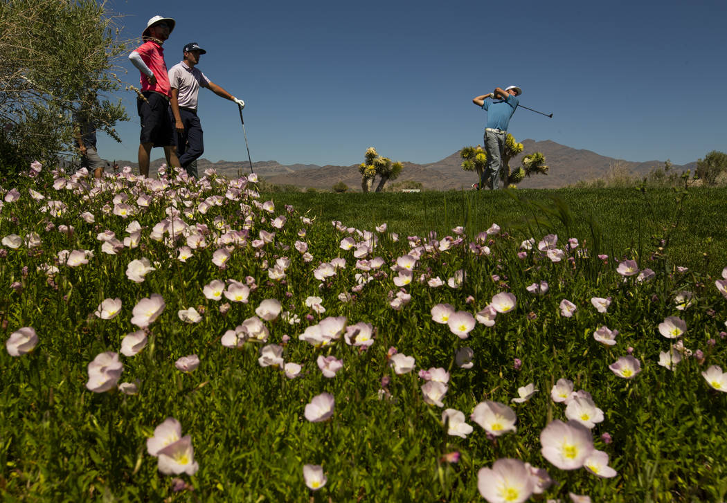 Golfer Van Thomas tees off about a course filled with wildflowers during a PGA US Open qualifyi ...