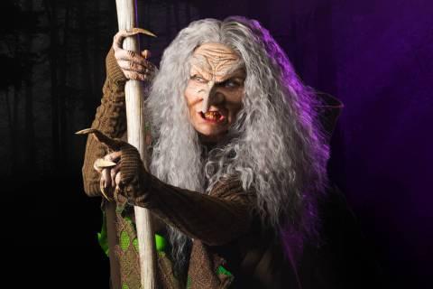 The Witch played by Traci Kesisian. Jesse J. Sutherland