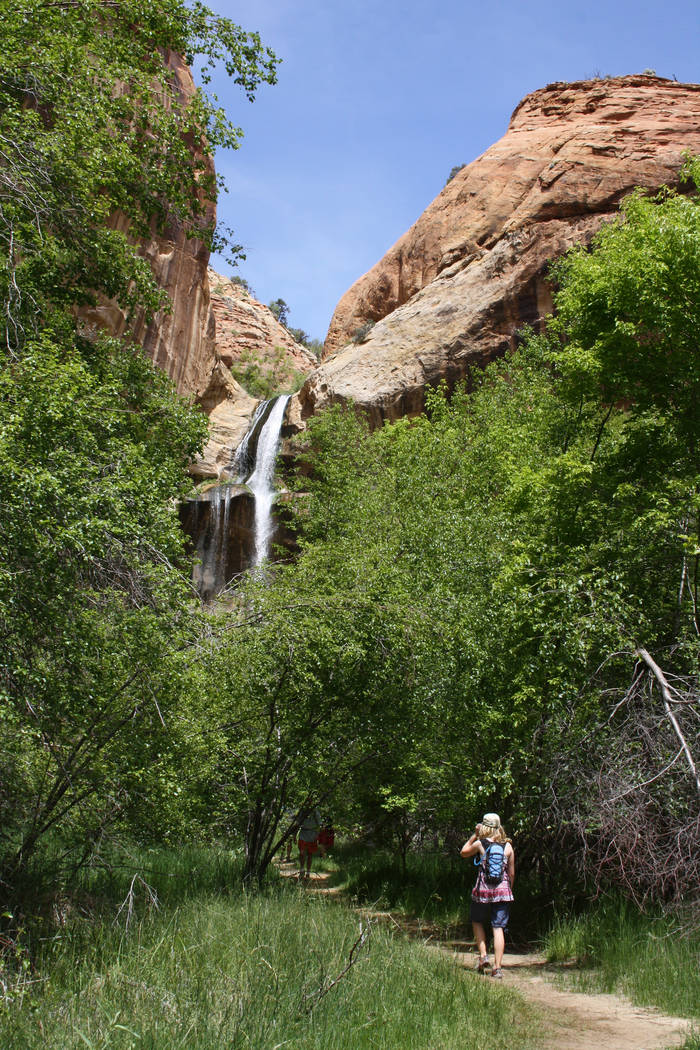 The 126-foot Lower Calf Creek Falls is located in Grand Staircase-Escalante National Monument a ...
