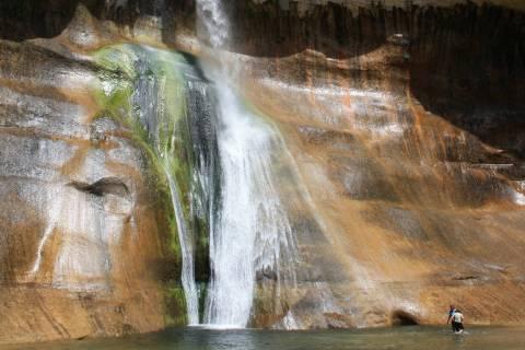 Hikers can enjoy wading or swimming in the pool at the base of Lower Calf Creek Falls. (Deborah ...