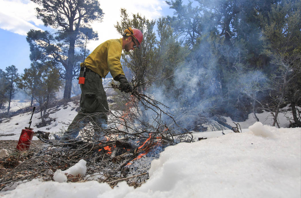 U.S. Forest Service Senior Firefighter Joel Presmyk, 26, chunks a fire during a prescribed burn ...