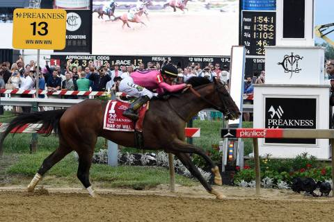 War of Will, ridden by Tyler Gaffalione, crosses the finish line first to win the Preakness Sta ...
