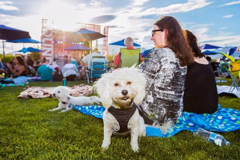 The Summerlin Sounds Concert Series returns to Downtown Summerlin every Wednesday, June 12-July ...