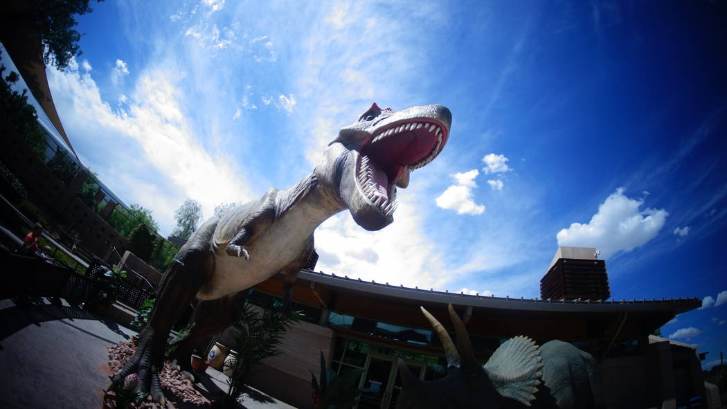 Dinosaurs have invaded the Springs Preserve in Las Vegas. This prehistoric exhibit runs all sum ...