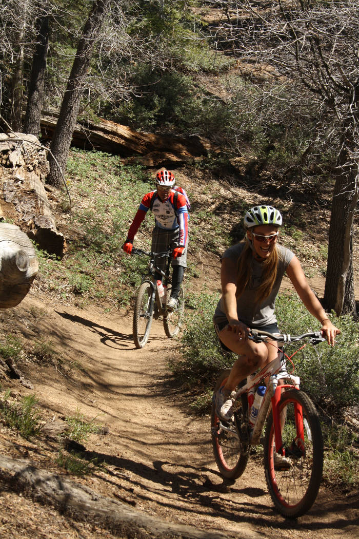 Mountain bike trails can be accessed from the Snow Summit Ski Resort, trails range from easy to ...