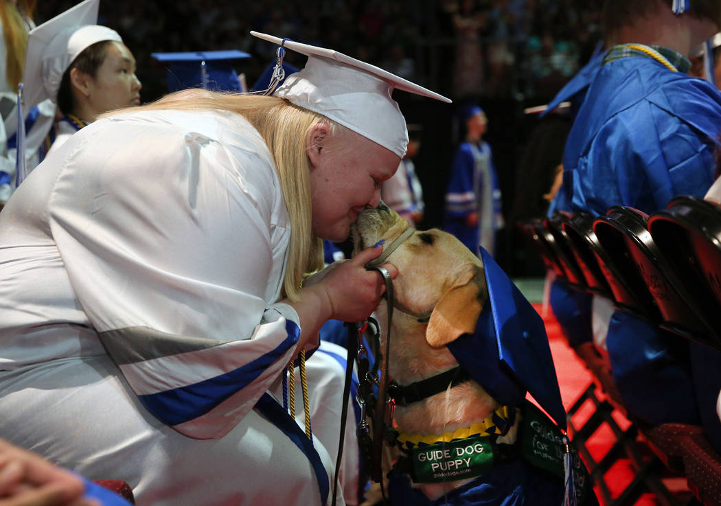 College of Southern Nevada High School student Sydney Hansen kisses her yellow lab, Boswell, af ...