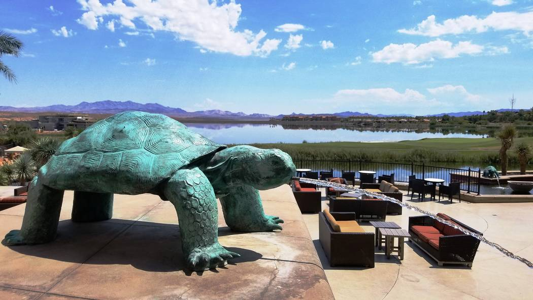 Fountains and turtle sculptures are an artistic part of the walk from parking lot to pool at We ...