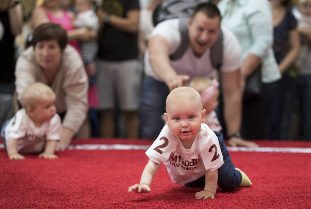 Babies crawl during the Baby Race event to mark international Children's Day in Vilnius, Lithua ...