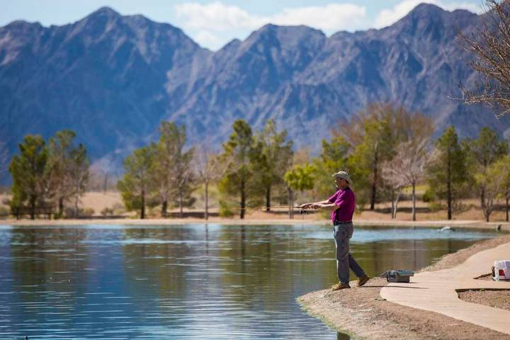 Tom Coleman, who has lived in Boulder City around 23 years, casts a line while fishing at Veter ...