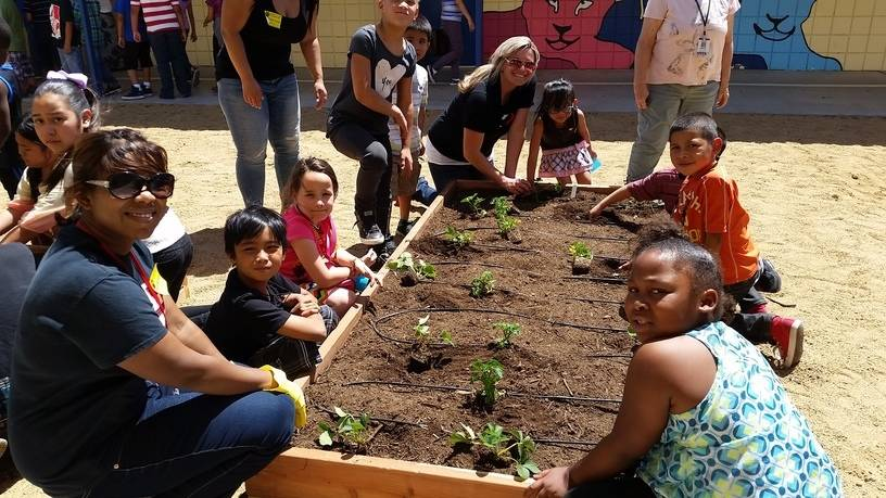 Students at Lake Elementary School are seen after their garden expansion. (Green Our Planet)