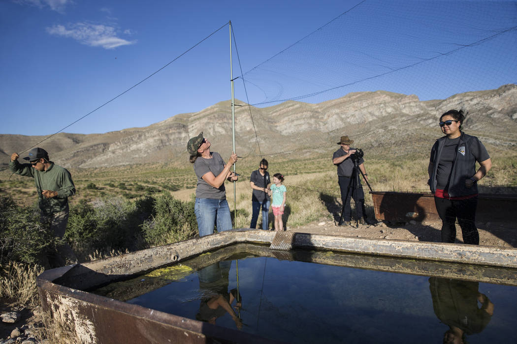 Christy Klinger, second from left, a wildlife biologist with the Nevada Department of Wildlife, ...