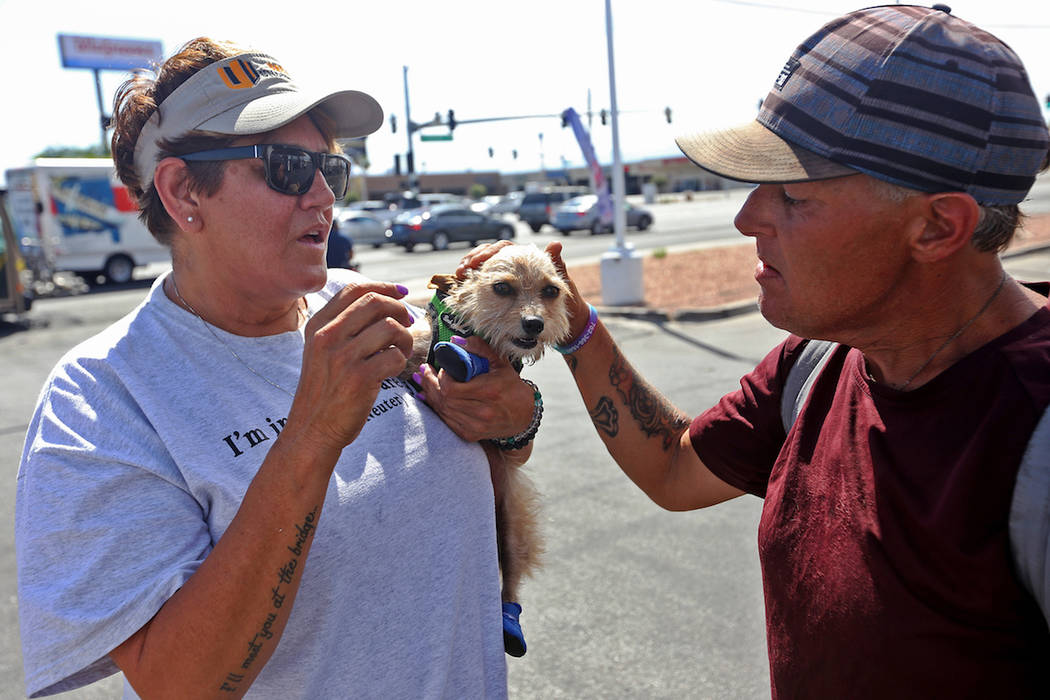 Cynthia Miyamoto, found of Urban Underdogs, talks to Joseph Woodward while holding his dog Karm ...