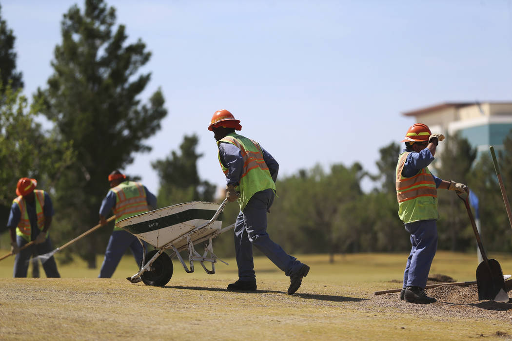 Members of the Nevada Division of Forestry work at the Aliante Golf Club in North Las Vegas, Th ...