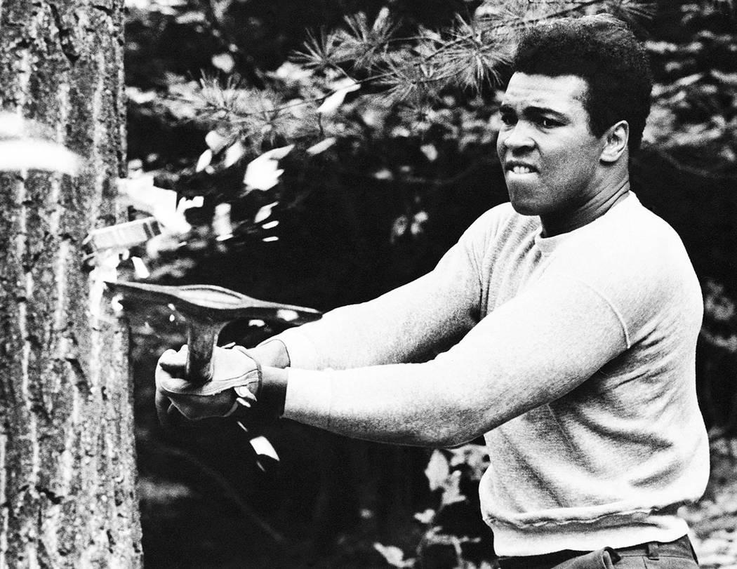 In this Aug. 23, 1973, file photo, boxer Muhammad Ali chops at a tree with an axe at his traini ...