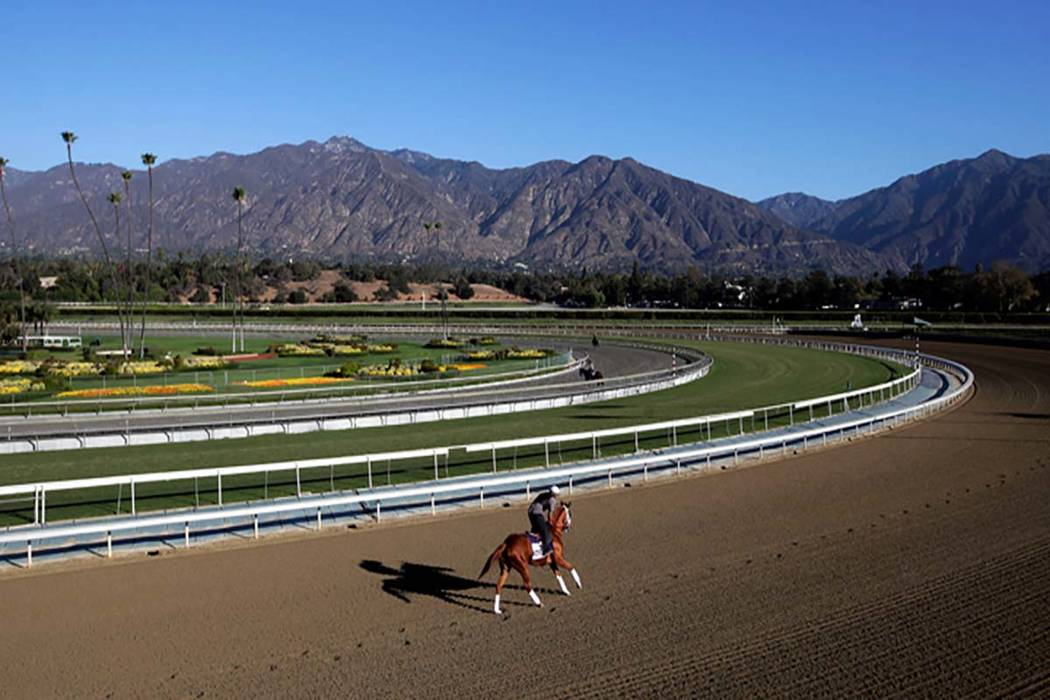 In this Oct. 30, 2013, file photo, an exercise rider takes a horse for a workout at Santa Anita ...