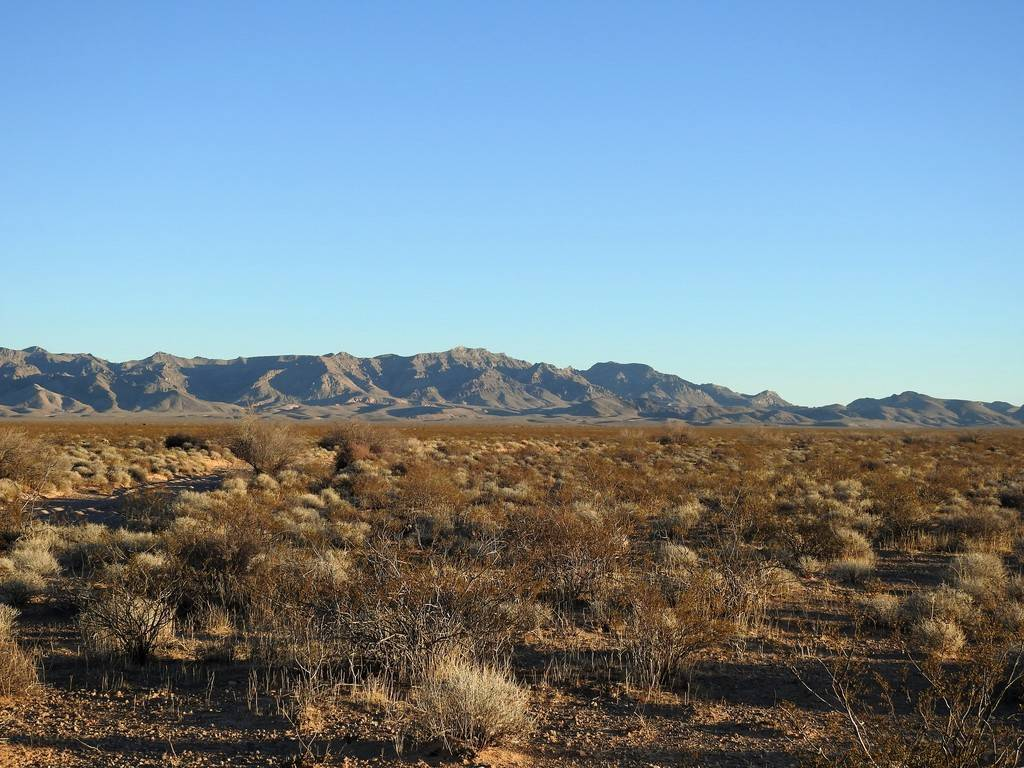 This patch of desert east of Interstate 15 near the road to Valley of Fire State Park is the pr ...
