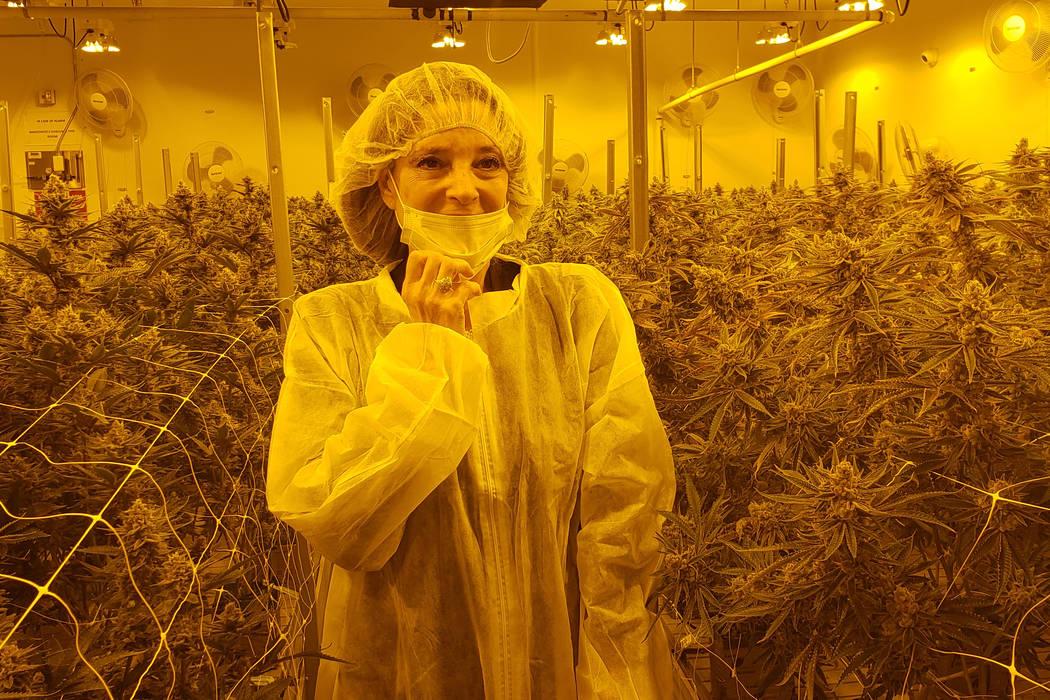 Democratic presidential hopeful Marianne Williamson tours Premium Produce cannabis facility in ...