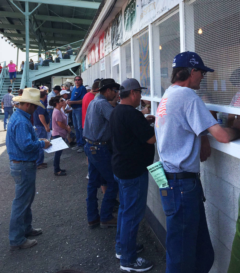 Fans place their bets at the White Pine Races in Ely. (Mike Brunker/Las Vegas Review-Journal)