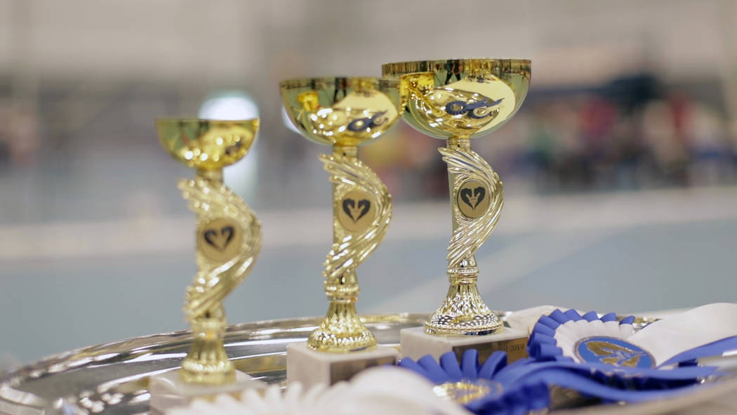 Awards stand on a tray ahead of the awarding ceremony of the 8th Hobby Horse championships in S ...