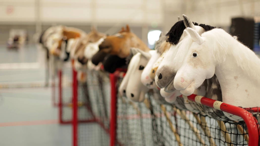 Dozens of hobby horses are lined up ready to be ridden during the 8th Hobby Horse championships ...