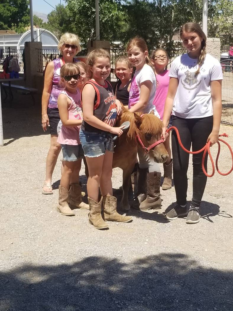 Sydney Knott, left, 62, founder of Horses4Heroes, teaches summer campers how to groom a miniatu ...