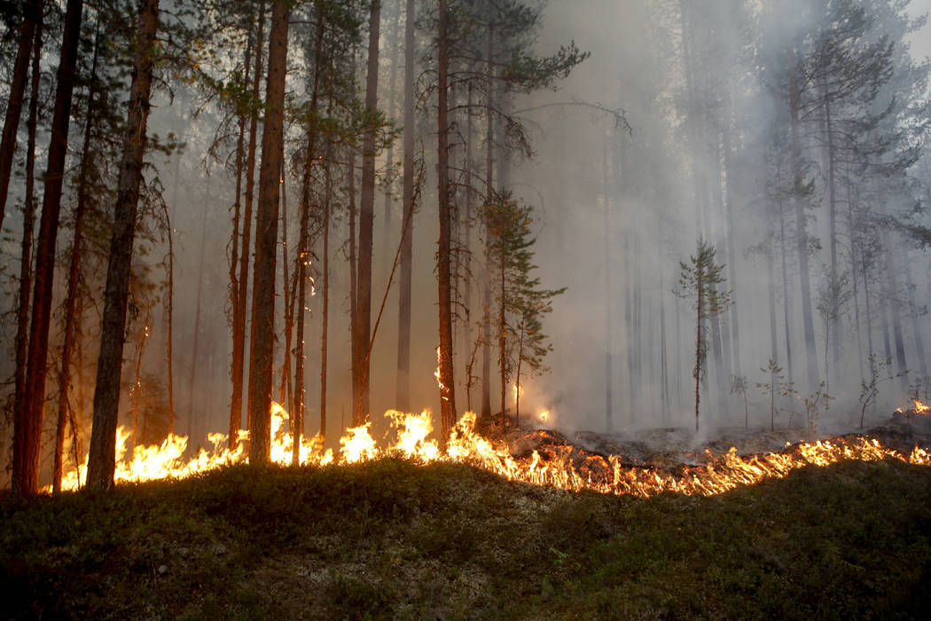 In this Sunday, July 15, 2018, file photo a wildfire burns in Karbole, outside Ljusdal, Sweden. ...