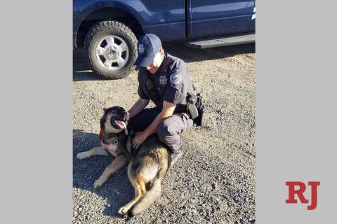 Nevada Highway Patrol Trooper Freeman and his newly adopted dog, Chief. (Nevada Highway Patrol/ ...