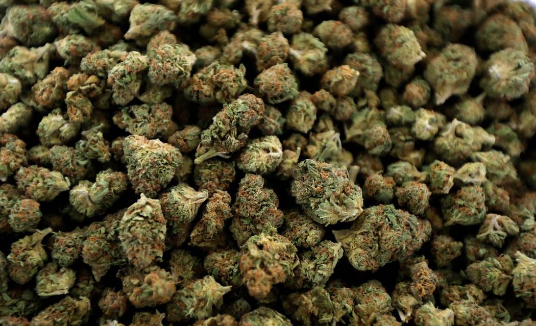FILE - In this April 12, 2018, file photo, nugs of marijuana await packaging near Shelton, Wash ...