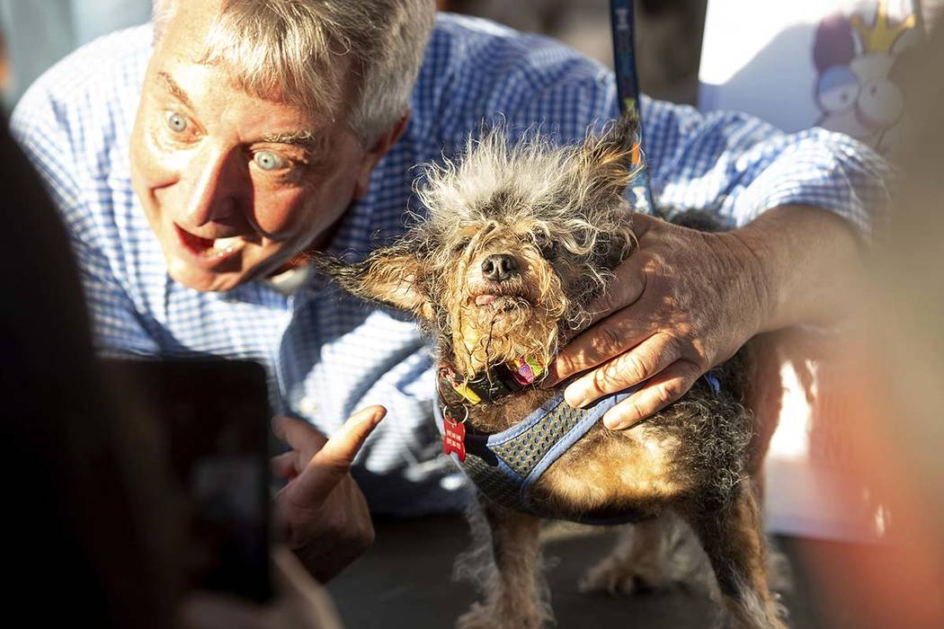 Scamp the Tramp celebrates after taking top honors in the World's Ugliest Dog Contest at the So ...