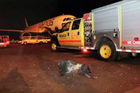 This photograph released by the state-run Saudi Press Agency shows debris on the tarmac of Abha ...