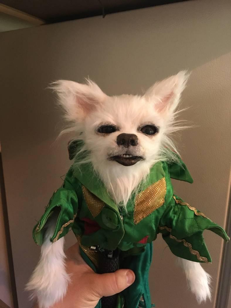 Mr. Stuffles, Piff The Magic Dragon's puppet partner, is shown backstage at Flamingo Las Vegas. ...