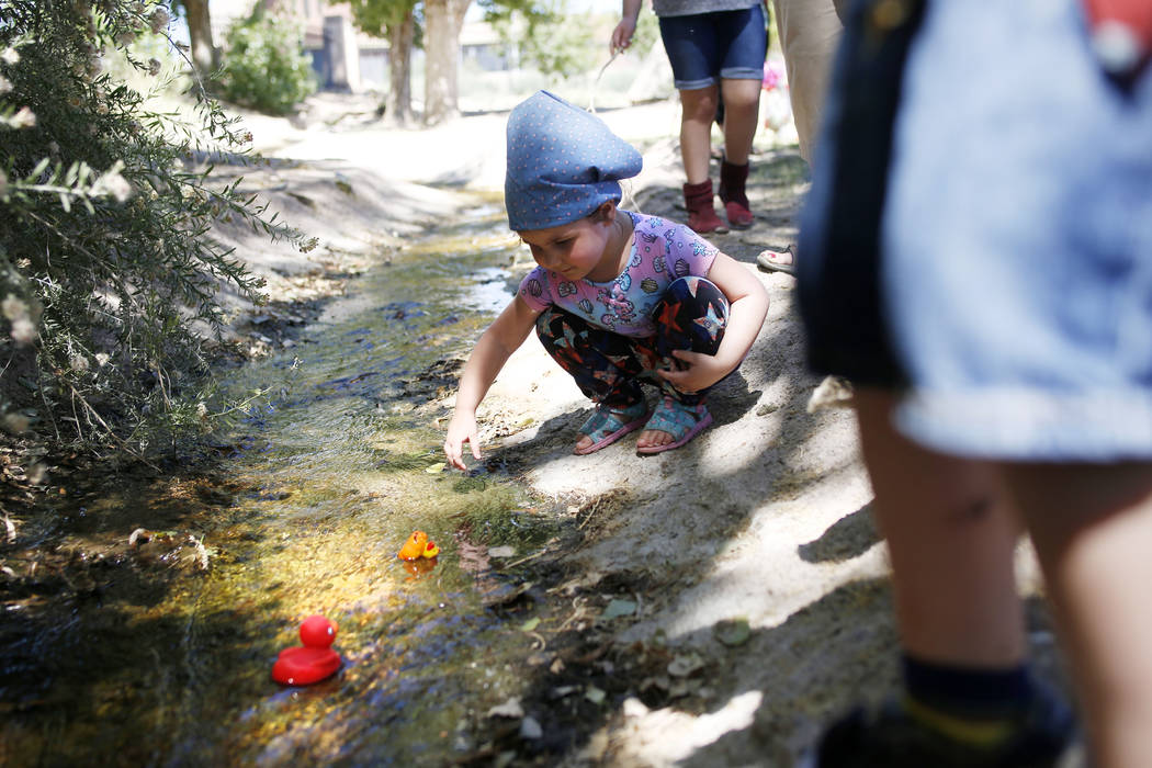 Addy Bartlett, 4, visiting family in Las Vegas, watches her plastic duck in the duck race durin ...