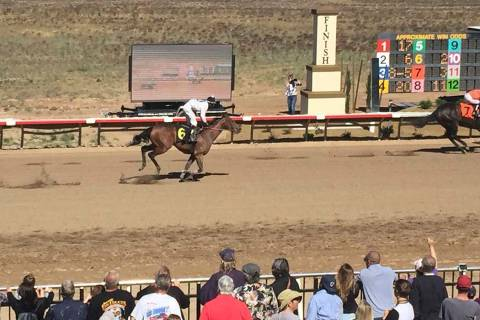 Horses race down the track at Arizona Downs in Prescott Valley, Arizona, May 25, 2019. (Mike Br ...