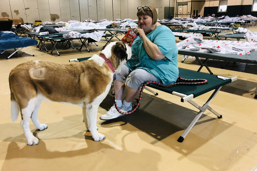 April Hamlin feeds her dog Duchess some crackers in a Red Cross shelter set up for anyone with ...