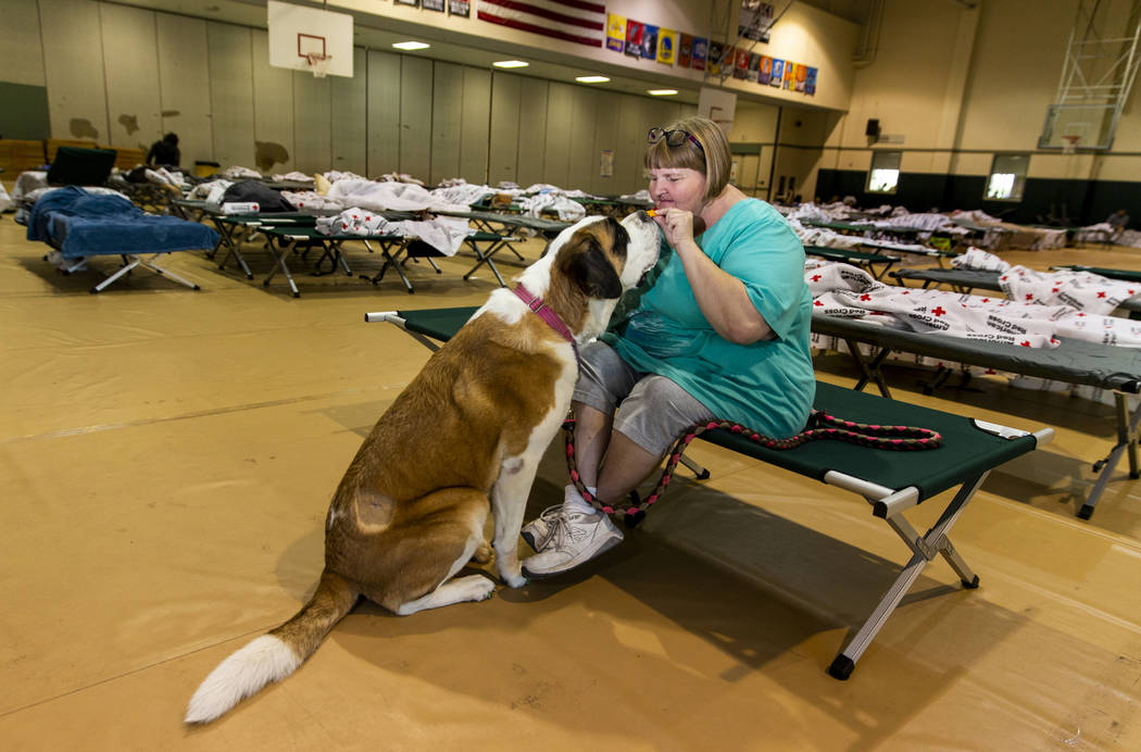 April Hamlin feeds her dog Duchess some crackers while staying at the California Earthquake Cle ...