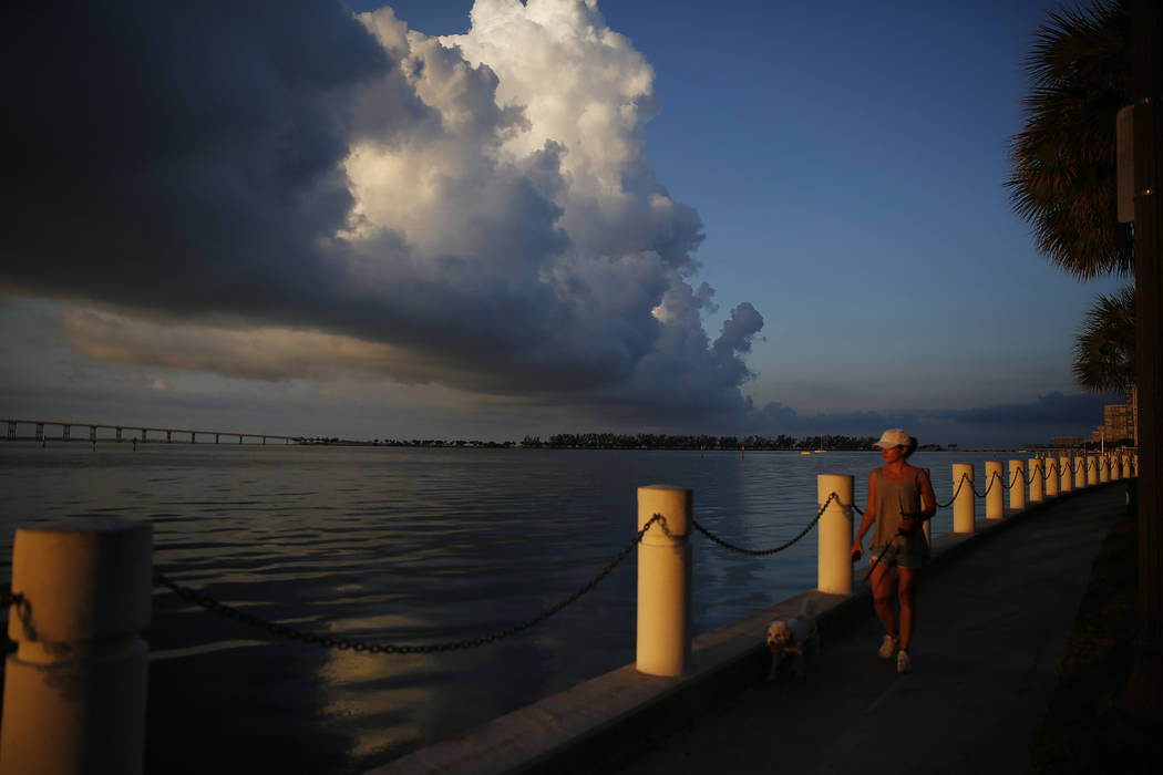 In this June 4, 2019, photo a woman walks her dog along the water near downtown Miami. Accordin ...
