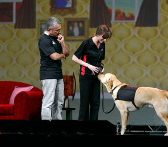 """""""When I see a dog, I know exactly what's wrong — it's the human,"""" Cesar Millan says. ..."""