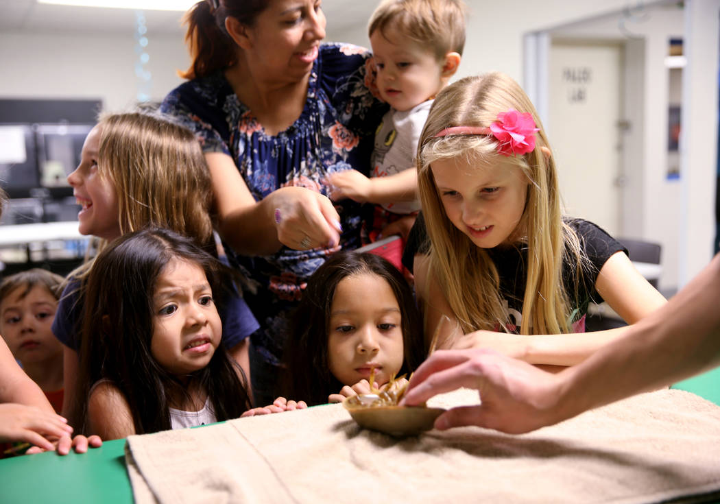 Renata Flores, 5, from left, Lily Venepps, 4, and Briar Lamb, 8, all of Las Vegas, check out a ...