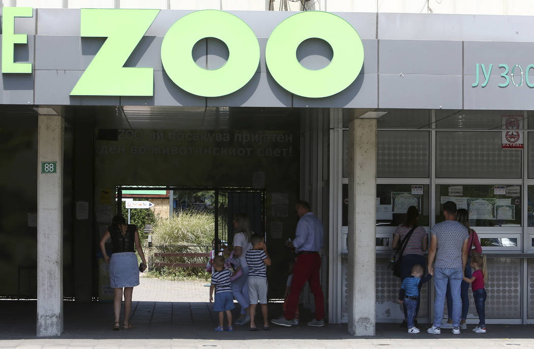 Visitors enter the zoo, in Skopje, North Macedonia, Thursday, July 11, 2019. Koko, the chimpan ...
