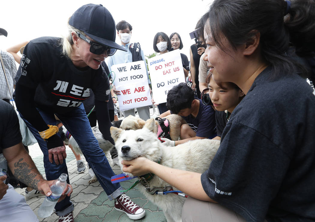 American actress Kim Basinger, left, watches a pet dog during a rally to oppose eating dog meat ...