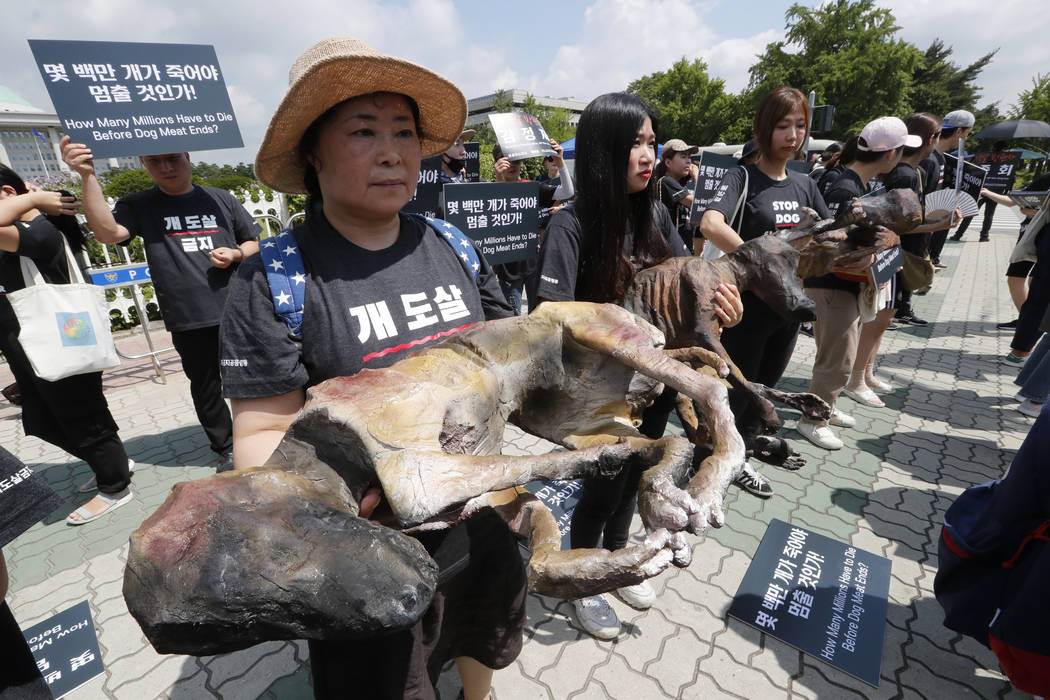 Members of the Last Chance for Animals hold models of slaughtered dogs during a rally to oppose ...